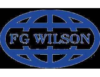 FG Wilson (Англия) (64)